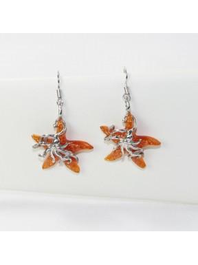 Earrings star-fish